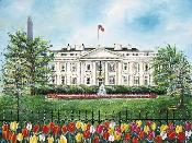 The White House in Springtime - Standard/Numbered Edition
